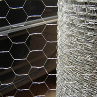 Electronic Galvanized Hex Wire Netting